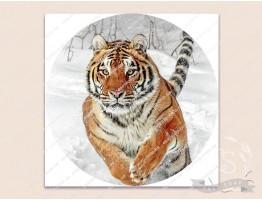Картинка на водорастворимой бумаге №260011 - 6x6 см