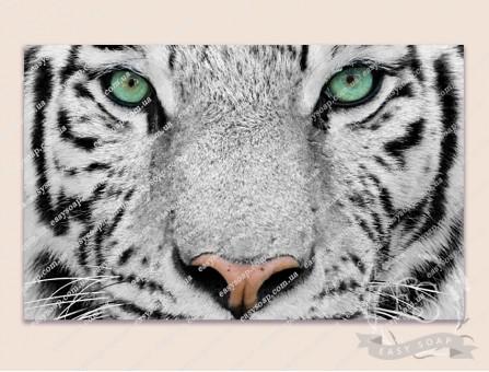 Картинка на водорастворимой бумаге №260019 - 8x5 см