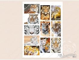 """Набор картинок на водорастворимой бумаге """"Тигры"""" прямоугольник 8,0х5,0"""