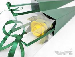 Коробка-конус для цветка зеленая