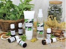 Репелленты: выбираем эффективную и натуральную защиту от насекомых