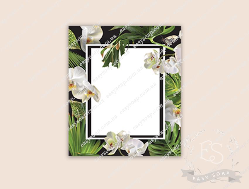 Этикетка №7_под надпись (пленка) джунгли 6*7 см
