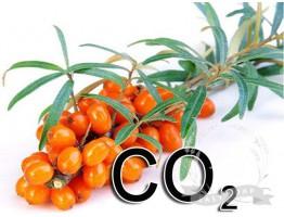 Экстракт СО2 облепихи