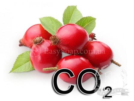 Экстракт СО2 шиповника