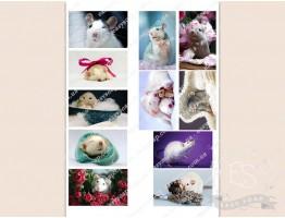 """Набор картинок на водорастворимой бумаге """"Милые мышки"""" 8,0х5,0"""