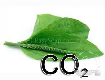 Экстракт СО2 подорожника