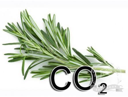 Экстракт СО2 розмарина