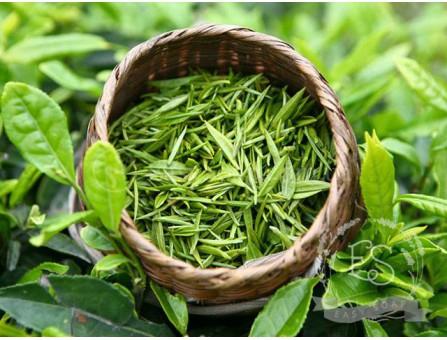 Гидролат зеленого чая